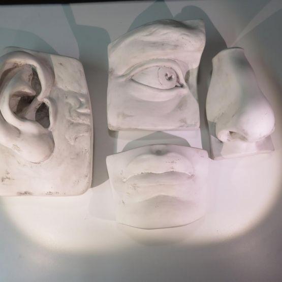 Элементы макета лица, гипс, XX в.